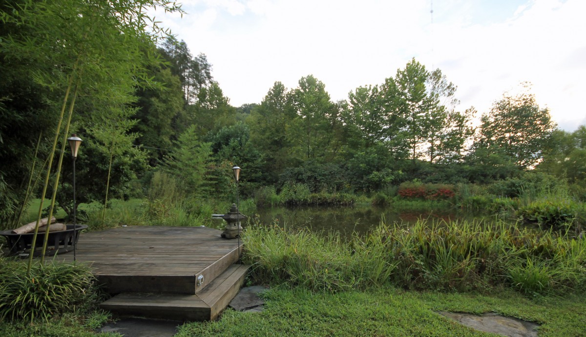 Pull up a chair and sit beside the pond at the cute dock just beside the pergola.